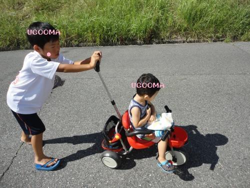 DSC09933_convert_20120920122217.jpg