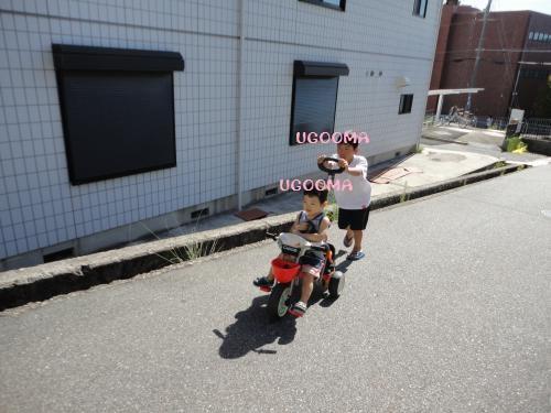 DSC09934_convert_20120920122011.jpg
