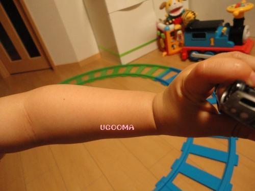DSC09973_convert_20120602095230.jpg
