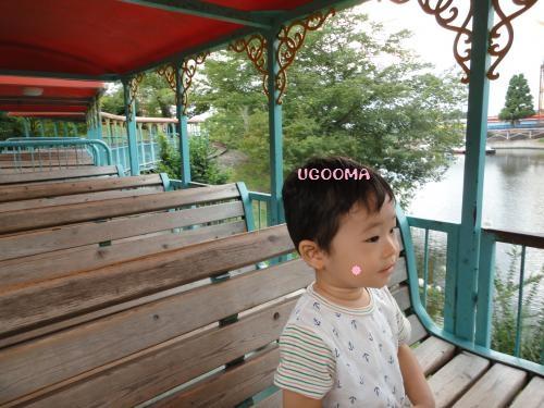 DSC09973_convert_20120922190802.jpg