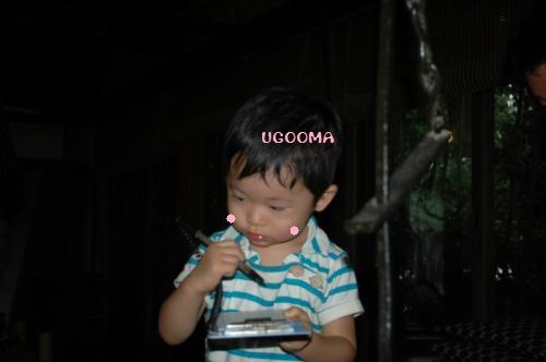 DSC_0293_convert_20120919173842.jpg