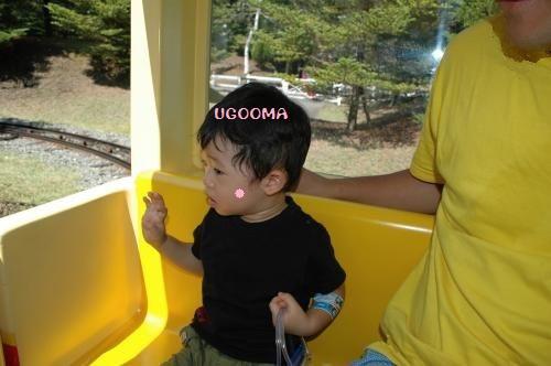 DSC_0469_convert_20121017141115.jpg