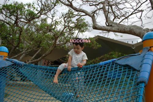 DSC_0689_convert_20121116140255.jpg