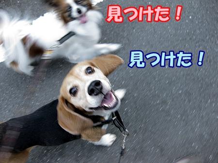 6_20130522195206.jpg
