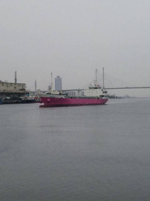ピンクの船