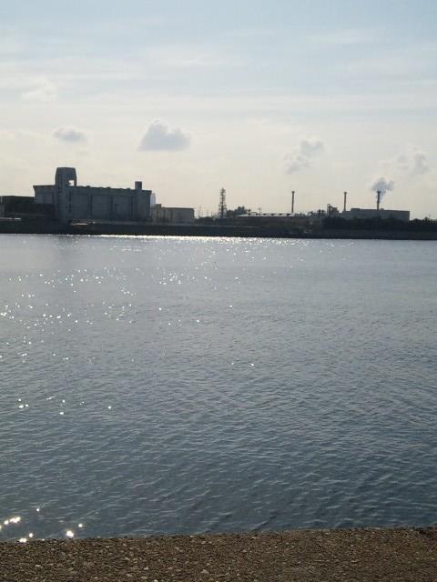鳴尾浜の対岸