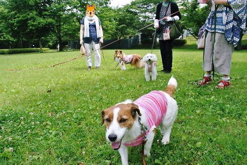 2012長岡公園467