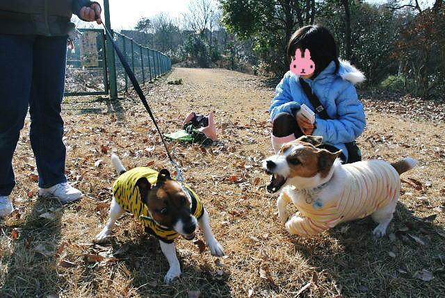 2014長岡公園017