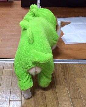 トイレへ向かうゆるキャラ(1)
