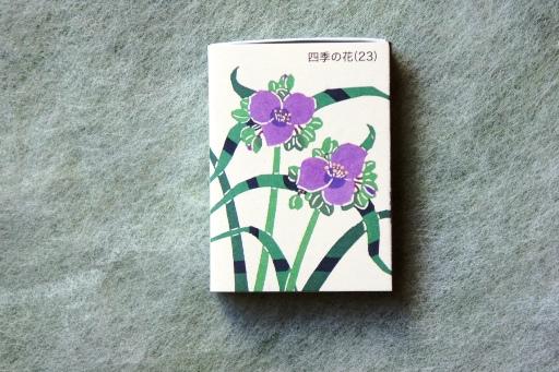 さかぐち(四季の花23) ①