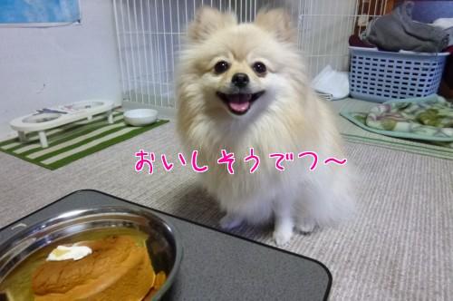 0501b_20120501204612.jpg