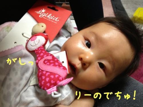 image_20130213093152.jpg