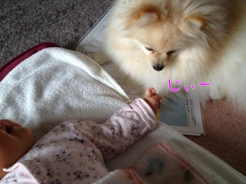 image_20130328140753.jpg