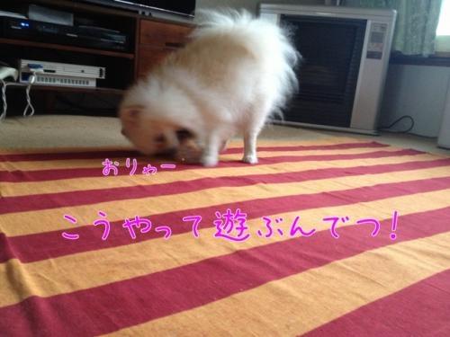 image_20130710224545.jpg