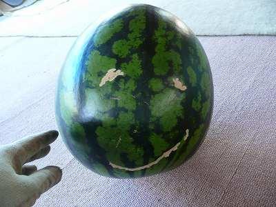 不気味な西瓜