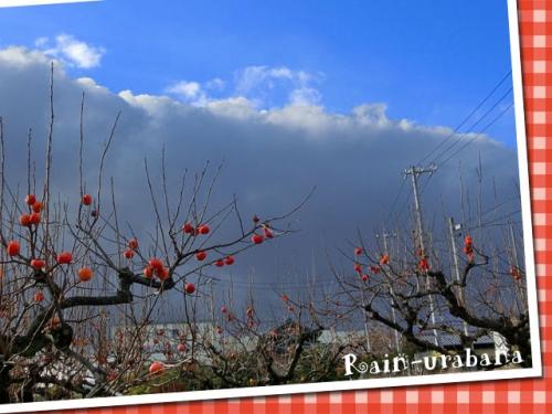 黒い雲やって来た (--lll