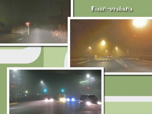 濃霧でっせぇ~!