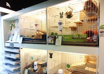 うさぎのしっぽ 恵比寿店