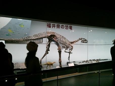 恐竜博物館6