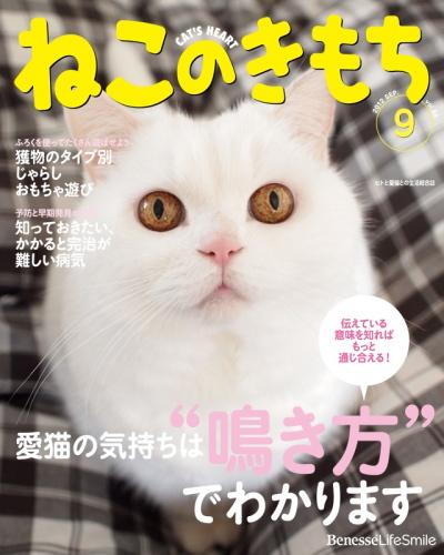 IMG_4300urabanashi.jpg