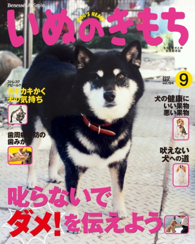 IMG_4311urabanashi.jpg