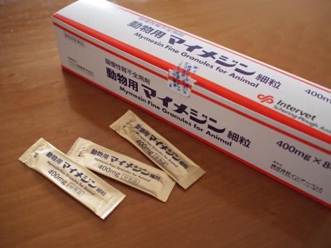 P6016616urabanashi.jpg