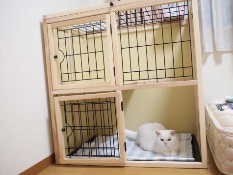 P6107102urabanashi.jpg