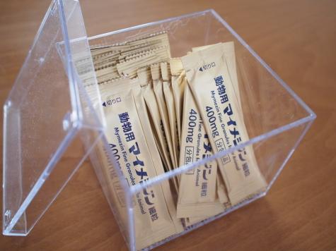 P7158711urabanashi.jpg
