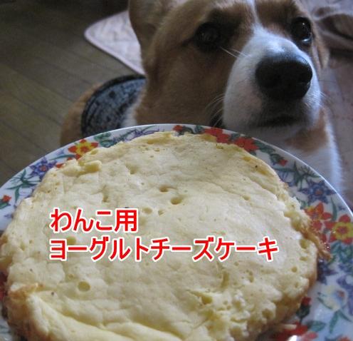 IMG_0099.jpg