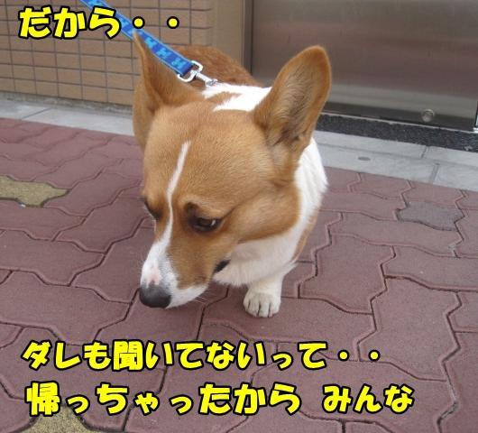 IMG_0131.jpg