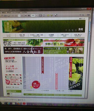 DSC_0478_20121101173846.jpg
