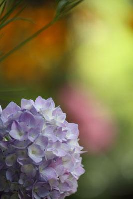 2012-06-10-奈良町の風景-099
