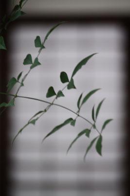 2012-06-10-奈良町の風景-048