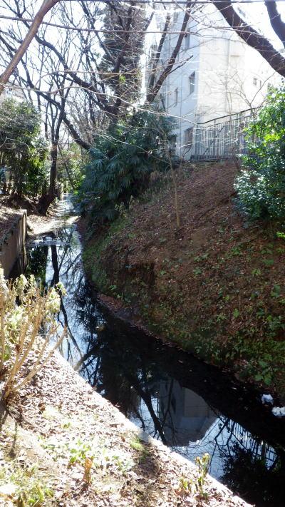 代田橋 玉川上水