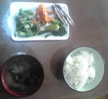 今日の朝飯1