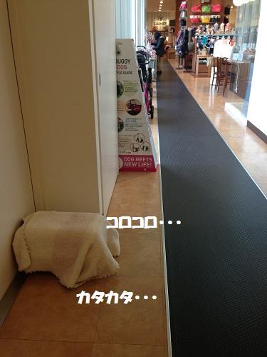 ハロー廊下