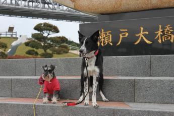 2ワンズ瀬戸大橋