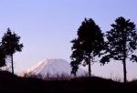 1.富士山-29P 96tc
