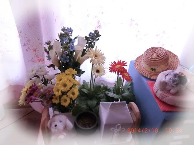 001_20140210110455f72.jpg