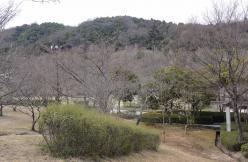 アコーディオンの練習~鏡山公園20130326-2