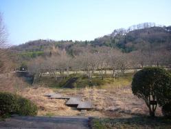アコーディオン練習~鏡山公園ー1
