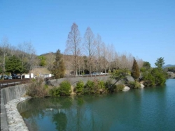 鏡山公園20140131-1