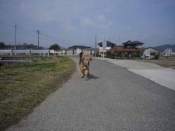 散歩20130323-4