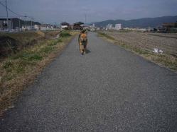 散歩20130323-5