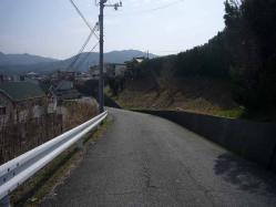 散歩20130324-1