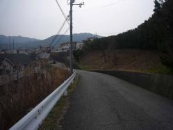 散歩20130329-1