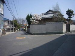 散歩20130330-5