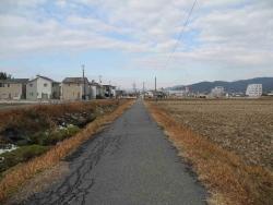 散歩20131230-17