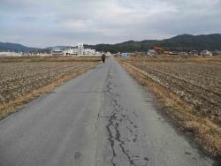 散歩20131230-18