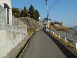 散歩20131231-05